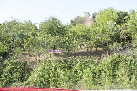 Земельный участок для строительства многоквартирного дома - Фото 4