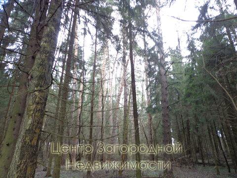 Участок, Рублево-Успенское ш, Ильинское ш, 26 км от МКАД, Маслово д. . - Фото 2