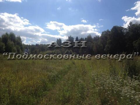 Дмитровское ш. 40 км от МКАД, Данилиха, Участок 25 сот. - Фото 1