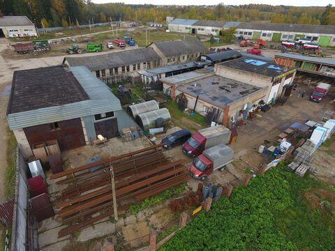 Сдам производственное помещение в Рузском районе - Фото 4