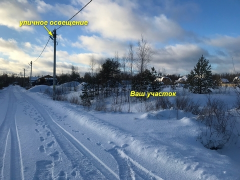 Продам участок Всеволожский р-он массив Блудное СНТ Придорожное - Фото 3