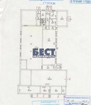 Помещение свободного назначения, Кунцевская, 150 кв.м, класс B. осз . - Фото 4