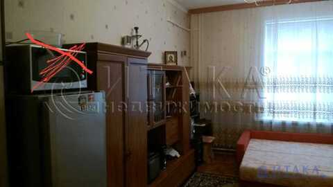 Аренда комнаты, м. Автово, Ул. Маринеско - Фото 3