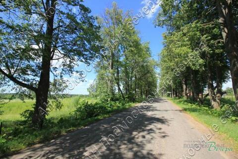 Новорижское ш. 92 км от МКАД, Волынщино, Дача 50 кв. м - Фото 5