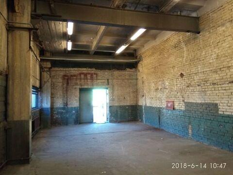 Сдам складское помещение 1734 кв.м, м. Бухарестская - Фото 4