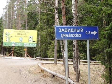 Продажа участка, Сосново, Приозерский район - Фото 1