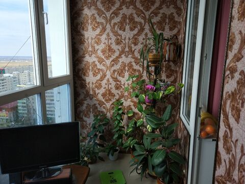 1-комн. в Заозерном - Фото 2