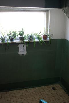 Уютная однушка в Брагино - Фото 5