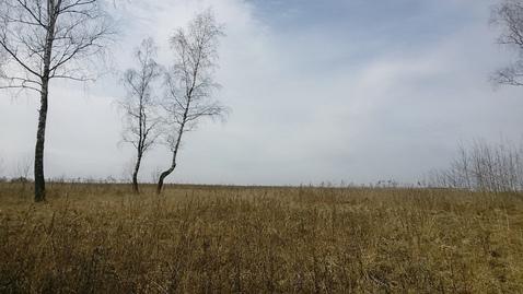 Участок 7,8 Га в Новой Москве в 25 км по Калужскому шоссе - Фото 5