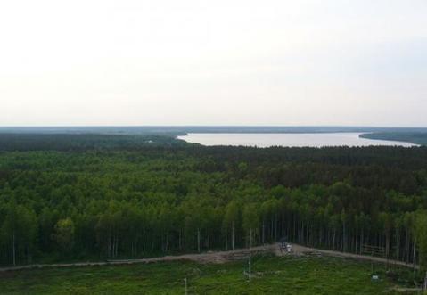 Красное Село + 15 мин , деревня Глухово - Фото 2