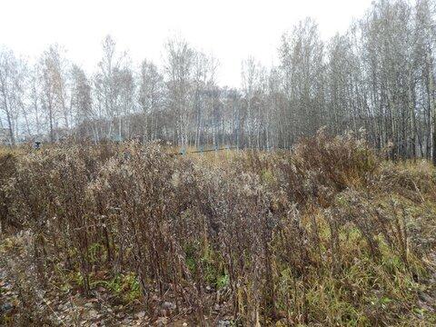 Продажа участка, Барлак, Мошковский район - Фото 5