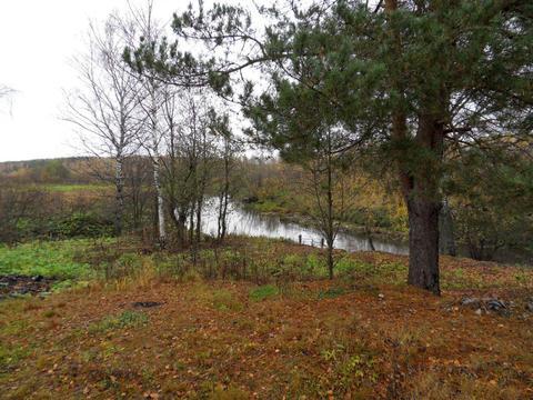 Два смежных участка в селе Стромихино Ивановской области. - Фото 3