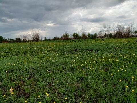 Продажа участка, Иваново, Дальняя Балинская ул - Фото 1