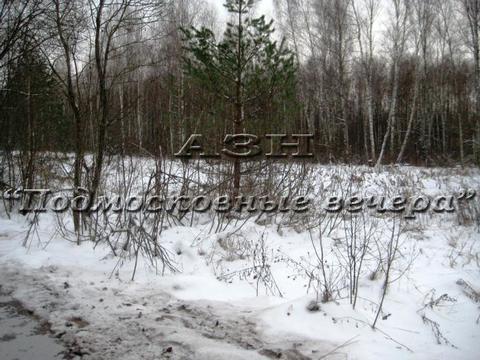 Горьковское ш. 100 км от МКАД, Никифорово, Участок 650 сот. - Фото 5