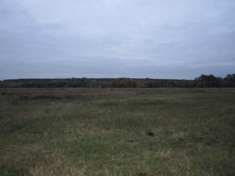 Участок под ИЖС в селе Беленькое - Фото 3