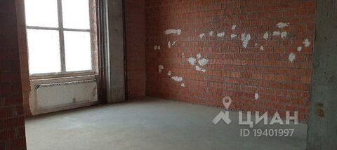 Аренда торгового помещения, Всеволожский район, Улица Пражская - Фото 2