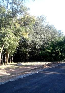 Участки со своим лесом в городе - Фото 5
