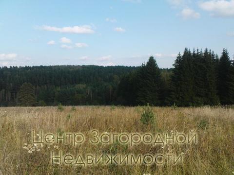 Участок, Ярославское ш, 60 км от МКАД, г.Сергиев посад. Ярославское .