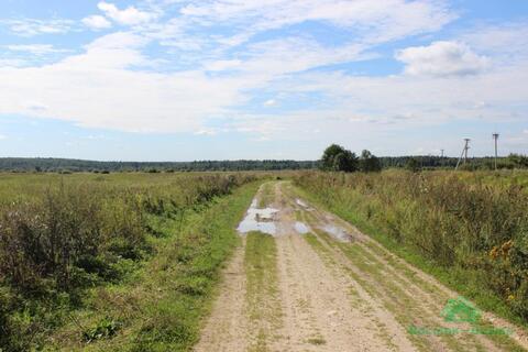 3,7 Га под сельхоз.производство - 95 км Щёлковское шоссе - Фото 3