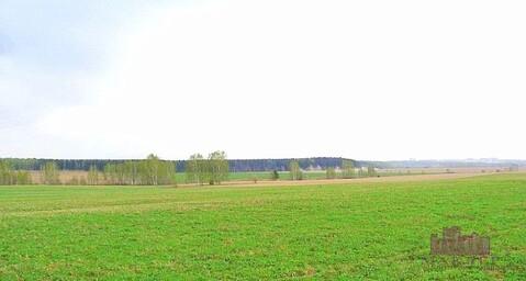 Продается участок 16 соток, 100 км от МКАД, д.Андреевское, Минское.ш - Фото 5