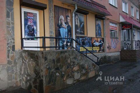 Торговая площадь в Курганская область, Шадринск ул. Свердлова, 77 . - Фото 1