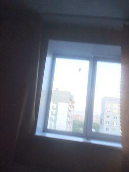 Аренда комнаты, Омск, Ул. Дмитриева - Фото 1