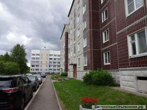3 ком. квартира, п. Усть-Луга, квартал Ленрыба 26 - Фото 1