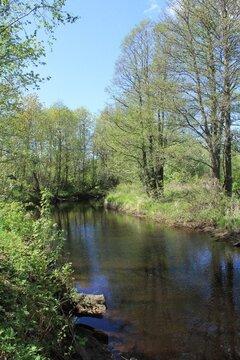 Участок на первой линии реки Черма - Фото 1