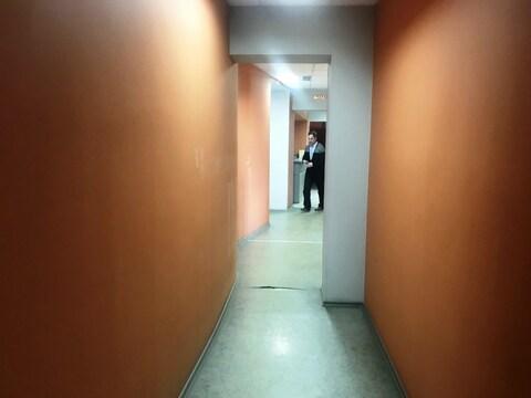 Офисное помещение, 423 м2 - Фото 5