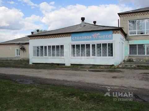 Продажа готового бизнеса, Красная Нива, Шадринский район, Ул. Школьная - Фото 2