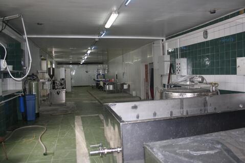 Производственный завод по изготовлению сыра - Фото 5