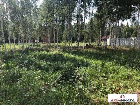Продажа участка, Лепсари, Всеволожский район, Лепсари - Фото 2