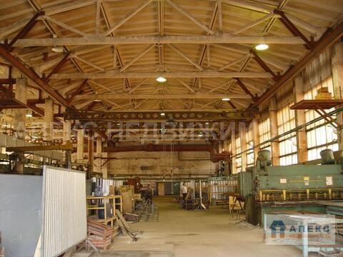 Продажа помещения пл. 14500 м2 под склад, производство, , , Михнево . - Фото 4
