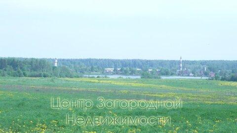 Участок, Волоколамское ш, Новорижское ш, 65 км от МКАД, Новопетровское . - Фото 4