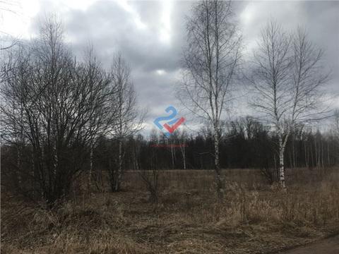 Участок рядом с Карпово - Фото 4