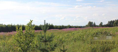 Купить земельный участок 22 га в деревне Горнешно, Окуловский район - Фото 4