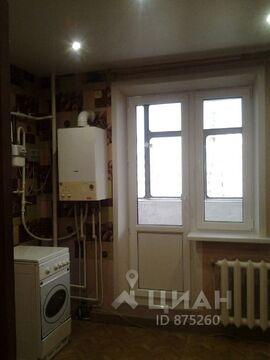 Аренда квартиры, Белгород, Ул. Щорса - Фото 1