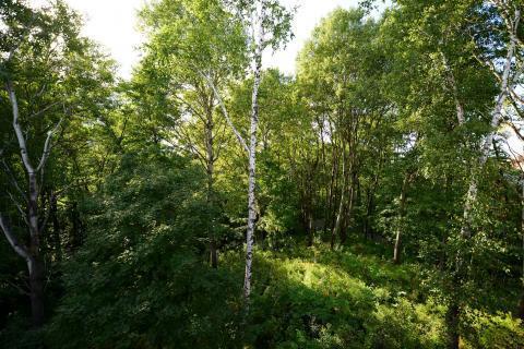 """Коттедж в поселке премиум-класса """"river park"""" - Фото 2"""