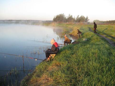рыбалка в верхнем пикалово