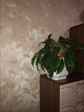 2-к квартира, Щелково, проспект 60 лет Октября, д.2 - Фото 4