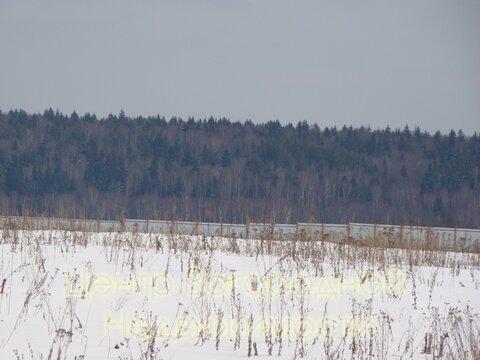 Участок, Волоколамское ш, 43 км от МКАД, Ефимоново, В окп. . - Фото 3