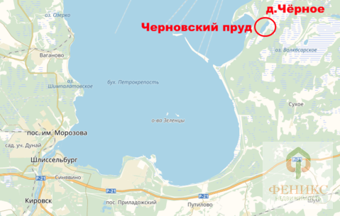 Черновский пруд - Фото 1