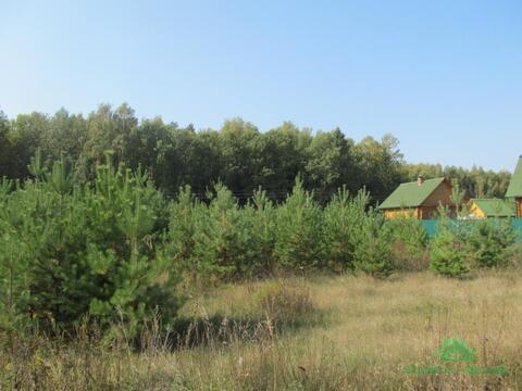 СНТ Вымпел - 21 сот. - д.Илейкино - 90 км Щёлковское шоссе - Фото 4