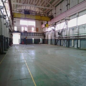 Сдам производственное помещение 2800 кв.м. - Фото 5