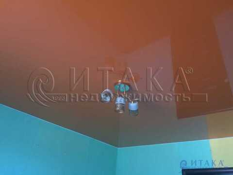 Продажа комнаты, Псков, Ул. Ижорского Батальона - Фото 4
