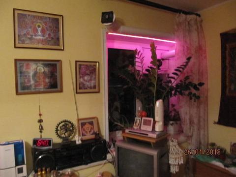 Нижний Новгород, Нижний Новгород, Пискунова ул, д.3к3, 2-комнатная . - Фото 4