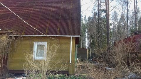 Дача 9 соток с домом 100 м2 в Приозерском р-не - Фото 3