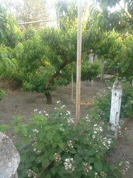 Продам дом в Бахчисарайском районе - Фото 5