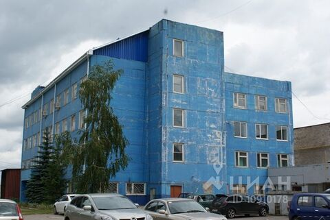 Аренда псн, Железногорск, Железногорский район, Ул. Мира - Фото 2