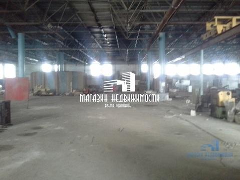 Сдается складское помещение, 3000 кв м, ул Комарова, р-н Стрелка (ном. . - Фото 2